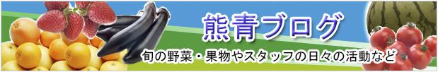 熊青ブログ